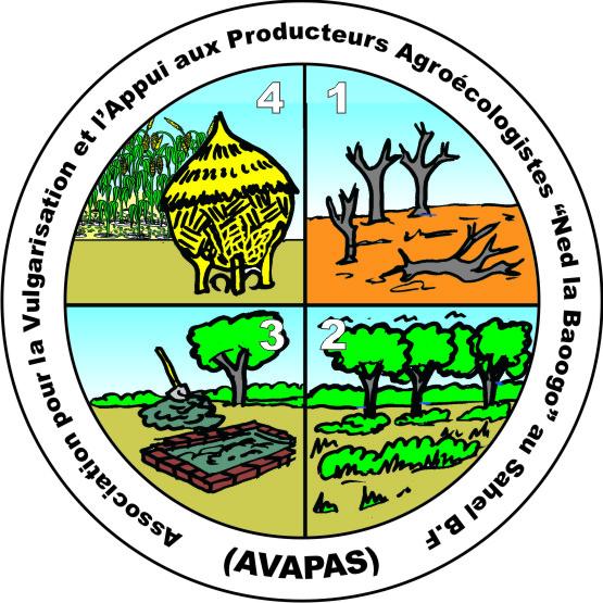 Logo AVAPAS
